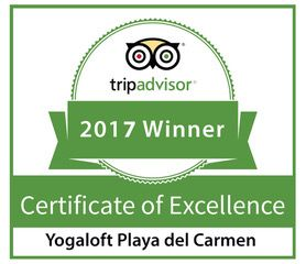 Yogaloft Awarded Certificate of Excellence by Trip Advisor